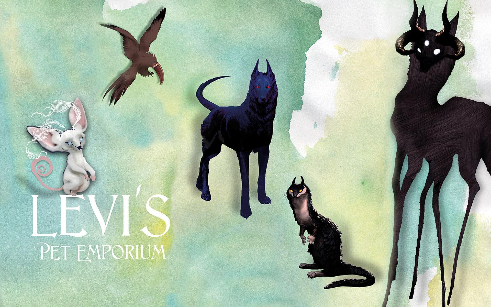 Levis Pet Emporium by Amplitude Films