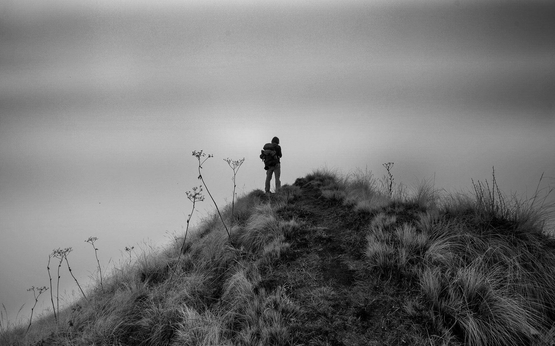 The Hiker by Amplitude Films
